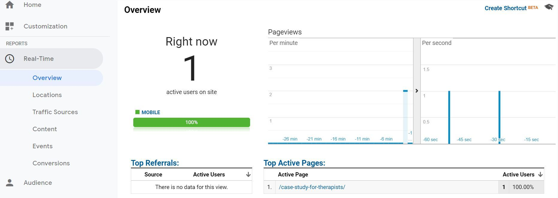 A screenshot of the real time google analytics dashboard